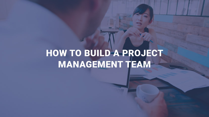 How to build a project management team